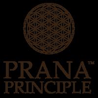 Prana Principle logo