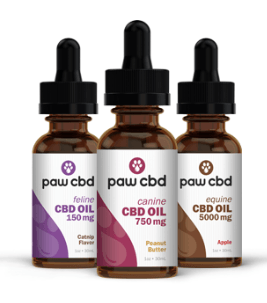 paw cbd oil