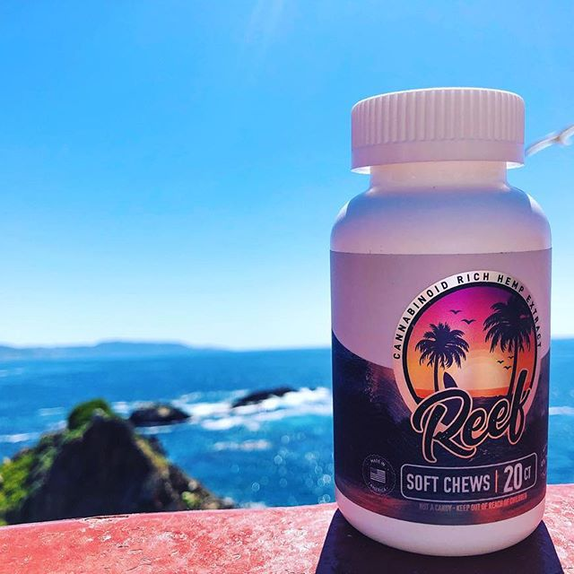 Reef CBD Soft Chews Review