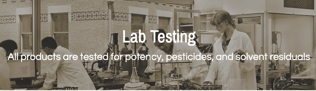 Holistapet CBD Lab Test Review