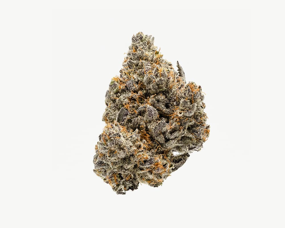Splitbud cannabis flower White Buffalo strain