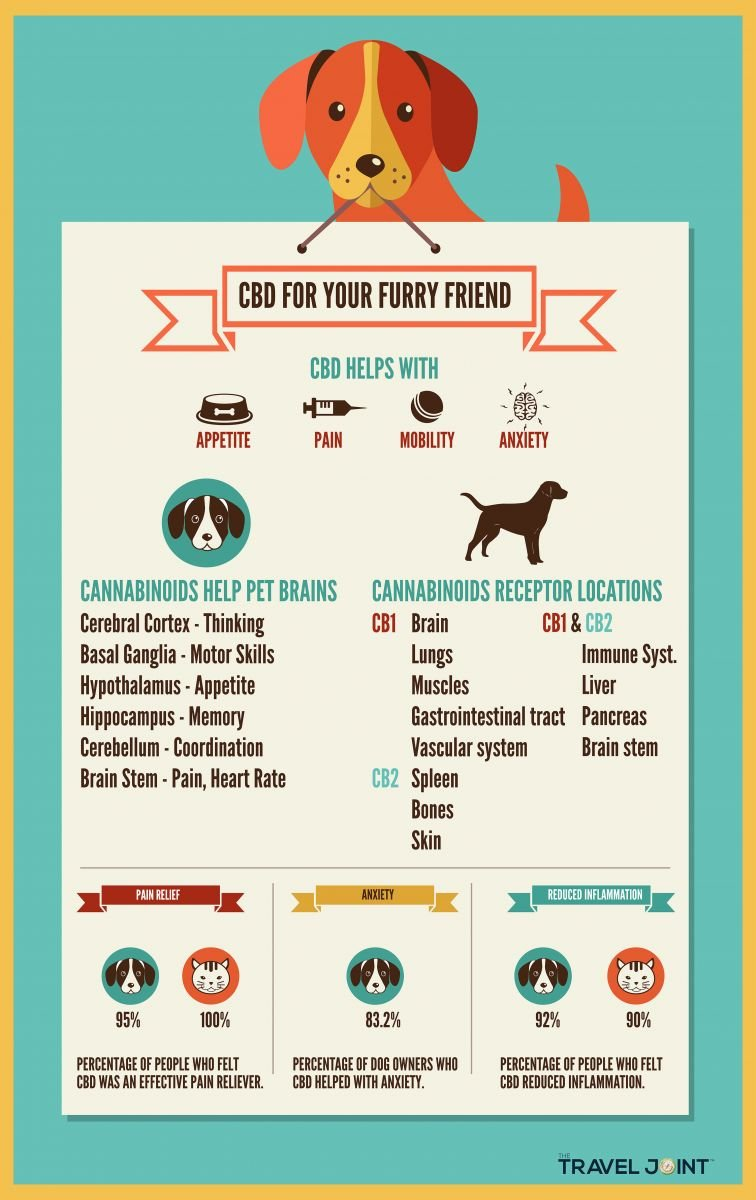 pet cbd benefits
