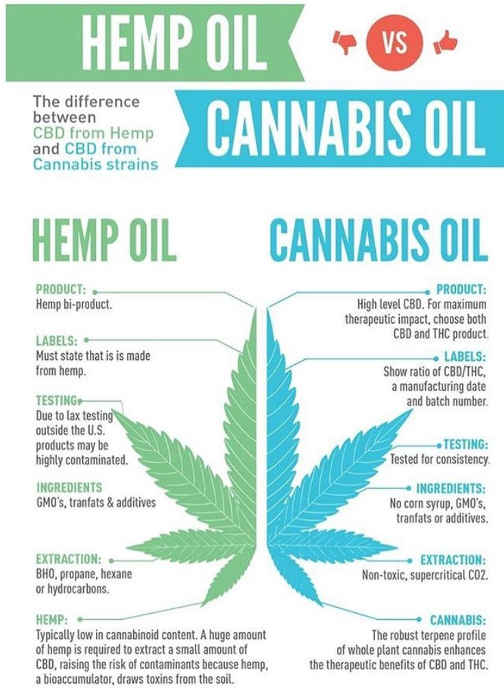 cannabis oil vs hemp oil